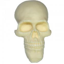 Totenschädel 2