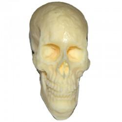 Totenschädel 4