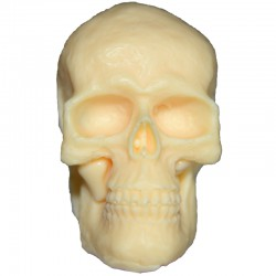 Totenschädel 3
