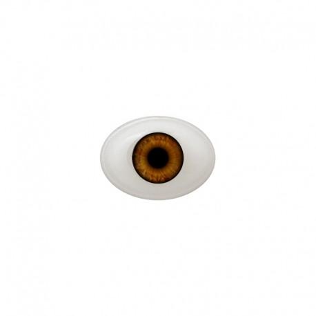 Augen oval braun